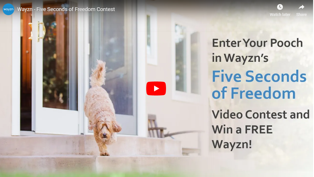 Enter the Five Seconds of Freedom Contest